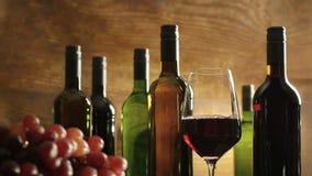 Atmósfera de la degustación de vinos en un sótano del lagar apenas que vierte el vino rojo en un vidrio delante de las botellas d almacen de video