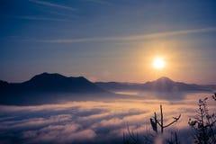 Atmósfera de la mañana con niebla fotografía de archivo libre de regalías