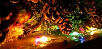 Atmósfera de la Navidad en casa, bulbos y castañas fotografía de archivo libre de regalías
