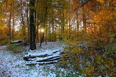 Atmósfera de la nieve de Novemer fotos de archivo