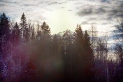 Atmósfera de la oscuridad del paisaje Imagen de archivo libre de regalías