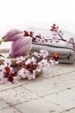 Atmósfera de la primavera para el cuerpo que limpia en casa el balneario Imagenes de archivo