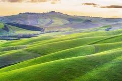 Atmosfärgräsplanvår i ett landskap av Tuscany Arkivbild
