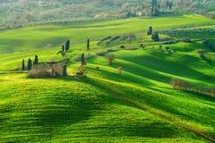 Atmosfärgräsplanvår i ett landskap av Tuscany, Italien Royaltyfria Bilder