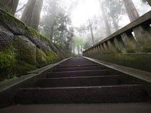 Atmosfärisk tempelbana Fotografering för Bildbyråer