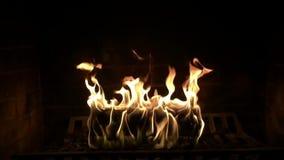 Atmosfera bonita confortável excelente que satisfaz perto acima do tiro do movimento lento da chama de madeira do fogo que queima filme