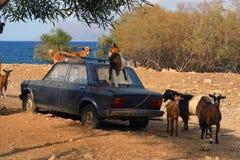 Atmosfera del Cretan Immagini Stock Libere da Diritti