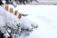 Atmosfera 2018 di inverno Fotografia Stock