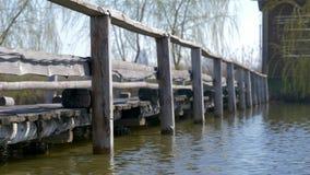 Atmosfera spokój i pokój woda błyśnie na drewnianym molu na jeziorze otaczającym płochami zdjęcie wideo