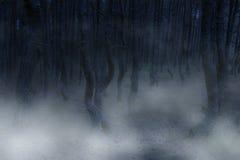 Atmosfera terrificante Fotografia Stock Libera da Diritti