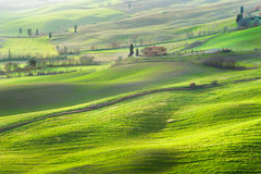 Atmosphere green spring in a landscape of Tuscany Royalty Free Stock Image