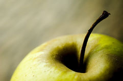 Atmospheric apple. A green apple with strong shadows, small depth of field stock images