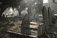 Atmospheric cemetery scene. In contre jour, taken early on a frosty morning Royalty Free Stock Photo