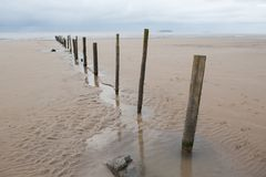 Atmospheric coast with wooden pile Stock Photo
