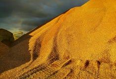Atmospheric desert landscape stock photo