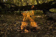 Atmospheric flame by the fire closeup. Camping. Leisure. Outdoor recreation. Beautiful orange fire with smoke with copy space royalty free stock images
