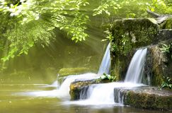 Atmospheric Forest Falls. Light streams through the Forest onto cascading Water. Wide angle long exposure capture Stock Image