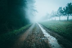 Atmospheric muddy path heading into the fog on the edge of woodlandwith a desaturated moody edit. Atmospheric muddy path heading into the fog on the edge of Royalty Free Stock Photography