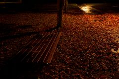 Atmospheric park bench at night with autumn leaves stock photography