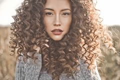 Atmospheric portrait of beautiful young lady. Outdoor atmospheric lifestyle photo of young beautiful lady. Brown hair and eyes. Warm fall. Autumn vibes. Softness Royalty Free Stock Images
