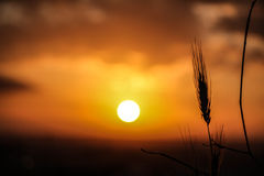 Atmospheric sunset Royalty Free Stock Photography