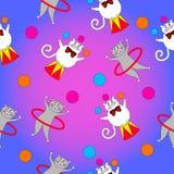 Ato engraçado do gato dois no circo Imagem de Stock