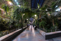 Atocha train station interior with plants, Madrid Stock Images