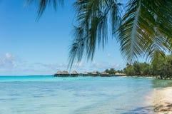 Atolón de Rangiroa, Polinesia francesa foto de archivo libre de regalías