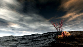 Atoll. 3d image with ocean,waves and atoll Stock Images