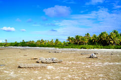 Atoll de Rangiroa photos stock