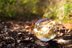 Atom Crystal Ball Nature. Magic crystal ball atom on forest floor for autumn fantasy imagery Stock Images