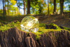 Atom Crystal Ball Nature. Magic crystal ball atom on tree stump moss for autumn fantasy imagery Stock Photo