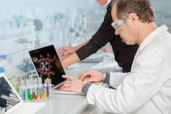 Atom Structure Analysis. A Chemist is analyzing the atomic structure on his Laptop Stock Photos