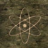 Atome de signe sur l'écorce Image libre de droits