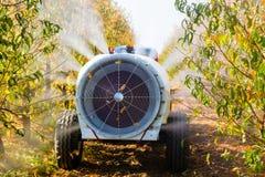 Atomizzatore agricolo in antiparassitari di spruzzatura di azione Immagine Stock