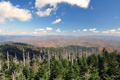 Atop Clingman's Dome Royalty Free Stock Photography