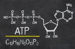 ATP illustrazione vettoriale