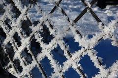 Atrás da cerca congelada Imagens de Stock