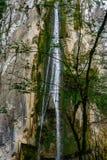 Atrás das árvores você pode ver a cachoeira fotos de stock royalty free