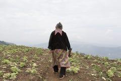 Atrás do tribo do monte na montanha imagens de stock royalty free
