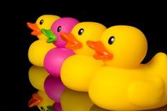 Atrévase a ser diferente - los patos de goma en negro Imagen de archivo libre de regalías