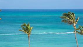 Atração da praia do turista, Aruba vídeos de arquivo