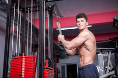 Atractive bodybuilder exercising in the gym Stock Photography