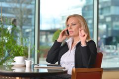 Atractive middle-aged blond businesswoman working Royalty Free Stock Photo