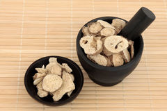 Atractylodes Herb. Used in chinese herbal medicine in a mortar with pestle and bowl over bamboo. Bai zhu stock images