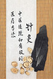 Atractylodes Rhizome. Acupuncture needles with atractylodes rhizome and mandarin script on rice paper over bamboo. Bai zu. Translation describes acupuncture stock photography