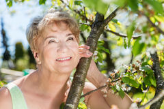 Atrakcyjna dojrzała kobiety obejmowania natura babcie Zdjęcia Royalty Free