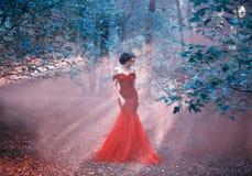 Atrakcyjna dziewczyna w czerwonej sukni fotografia stock