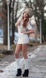 Atrakcyjna kobieta w zimy scenerii obraz royalty free