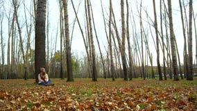 Atrakcyjna młoda dziewczyna w jesień parku pod drzewem, siedzący na ziemi, pracuje w laptopie zdjęcie wideo